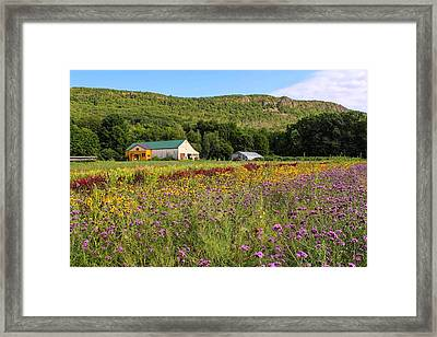 Mountain View Farm Easthampton Framed Print