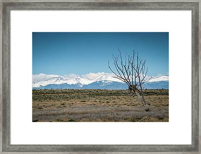Mountain Views Framed Print by Mary Lee Dereske