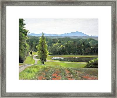 Mountain Vineyard Framed Print by Christopher Reid