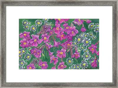 Mountain Wild Flowers Framed Print by Dawn Senior-Trask