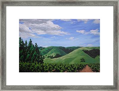 Mountains And  Vineyard Framed Print