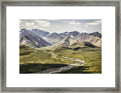 Mountains In Denali National Park Framed Print