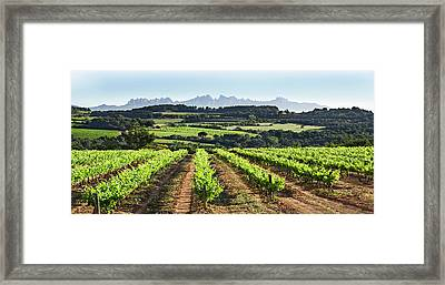 Mountains Of Montserrat Catalunya Framed Print by Gina Dsgn