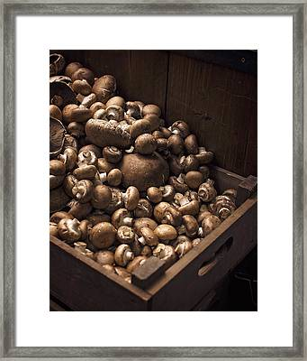 Mountains Of Mushrooms Framed Print