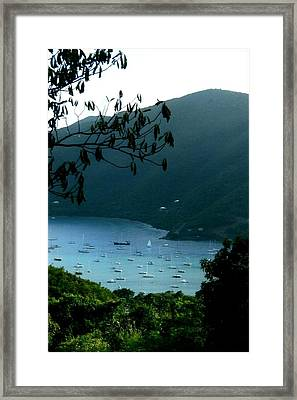 Mountainside Coral Bay Framed Print by Robert Nickologianis