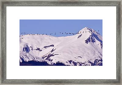 Mountaintop Geese II Framed Print