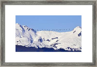 Mountaintop Geese Framed Print