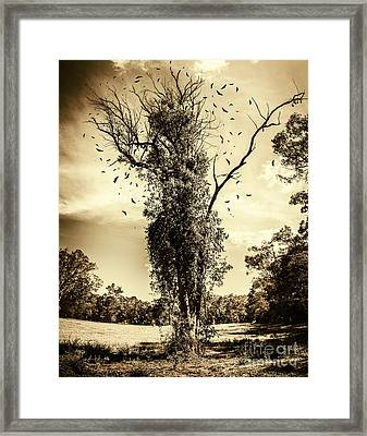 Mourning Tree Framed Print by Jorgo Photography - Wall Art Gallery