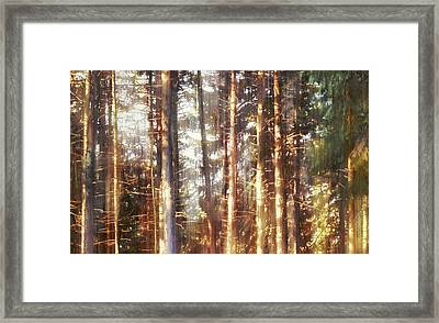 Mourning Wolfsong Framed Print
