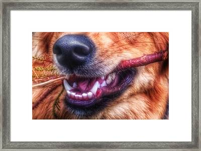 Mouth Framed Print by Isabella F Abbie Shores FRSA