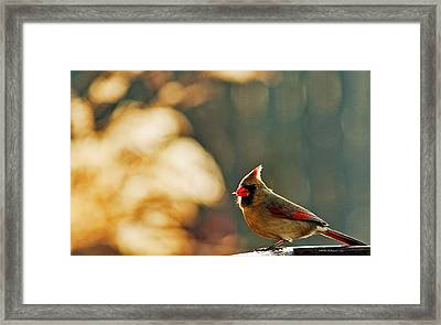 Mouthful Framed Print