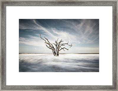 Movement Framed Print by Ivo Kerssemakers