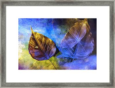 Movement Of Time Framed Print