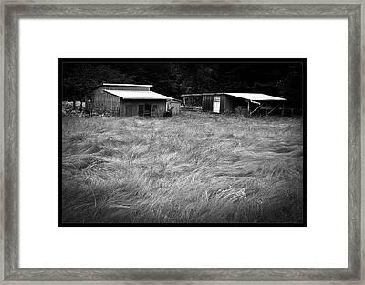 Moving Grass Framed Print by Dale Stillman