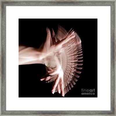 Moving Hands A070447 Framed Print