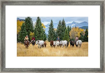 Moving The Herd Framed Print by Jack Bell