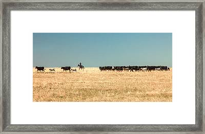 Moving The Herd Framed Print