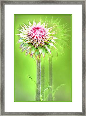 Moving Framed Print by James Whitworth