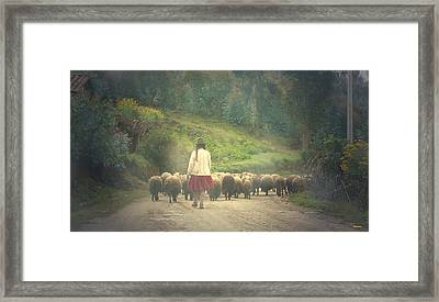 Moving To Greener Pastures Ankawasi Peru Framed Print