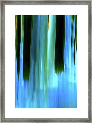 Moving Trees 37-05 Portrait Format Framed Print