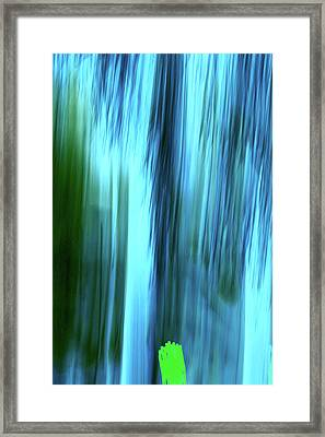 Moving Trees 37-15portrait Format Framed Print