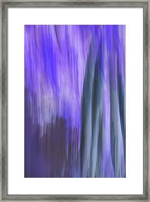 Moving Trees 37-36 Portrait Format Framed Print