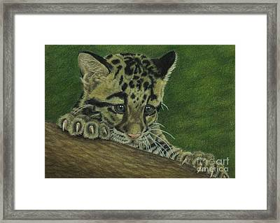 Framed Print featuring the painting Mowgli by Jennifer Watson