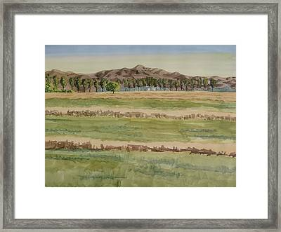 Mown Hay Framed Print by Bethany Lee