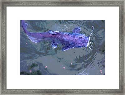 Mprints - Big Cat Framed Print