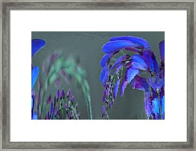 Mprints - Wisteria Framed Print