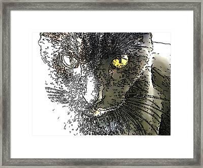 Mprints - Bad To The Bone Framed Print