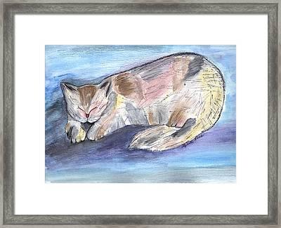 Mprints - Rainbow Cat Framed Print by M  Stuart
