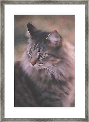 Mprints - The Diva Framed Print by M  Stuart