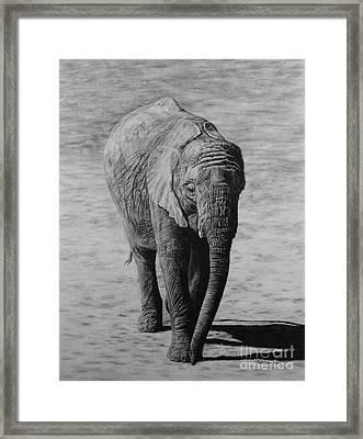Mpumi Framed Print by Jennifer Watson