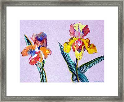 Mr. And Mrs. Yellow Iris Framed Print by Mindy Newman