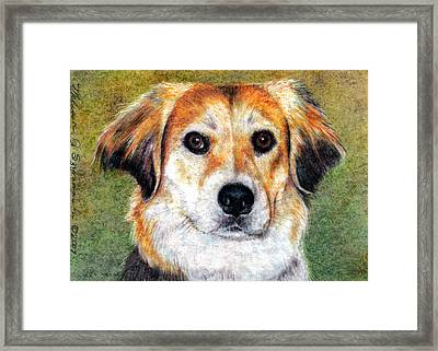 Mr Bojangles Framed Print