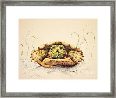 Mr. Flo Framed Print by Katharina Filus