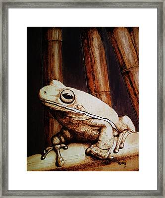Mr. Frog Framed Print by Freddy  Smith