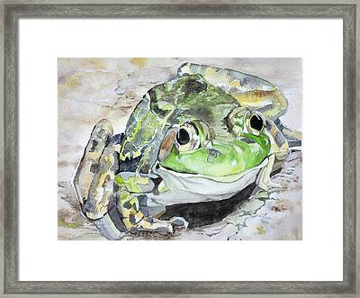 Mr Frog  Framed Print
