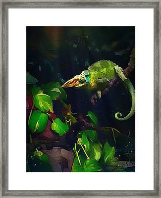 Framed Print featuring the photograph Mr. H.c. Chameleon Esquire by Sharon Jones