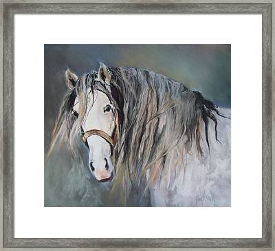 Mr Magnificent Framed Print by Debbie Anderson