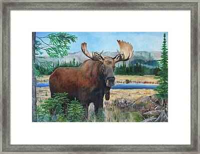 Mr. Majestic Framed Print
