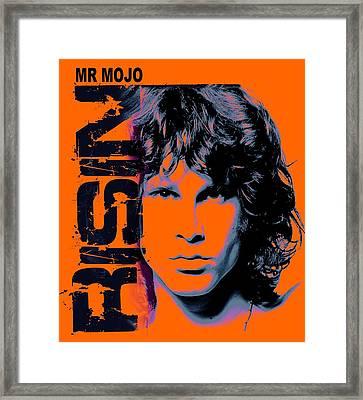 Mr Mojo Risin Framed Print by Mal Bray