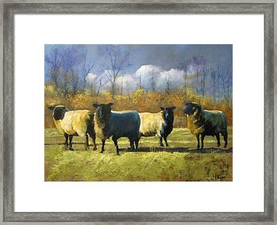 Mr. Shew's Sheep Framed Print