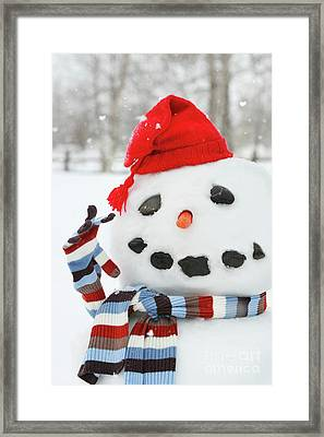 Mr. Snowman Framed Print by Sandra Cunningham