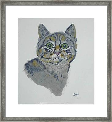 Framed Print featuring the painting Mr. Tiger by Hilda and Jose Garrancho