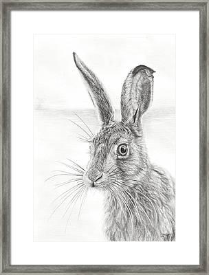 Mr Whisker Framed Print by Frances Vincent