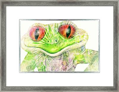 Mr Ribbit Framed Print