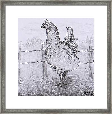 Mrs. Hen Framed Print