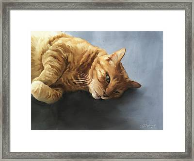 Mr.snuggles Framed Print by Simon Sturge